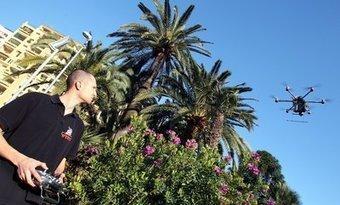 A Monaco, on chasse les charançons rouges avec des drones | EntomoNews | Scoop.it