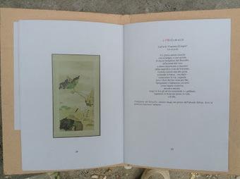 monteverdelegge: In uscita le poesie di Li Qingzhao per MVL Cartoni | Il mondo della letteratura | Scoop.it