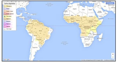 Afrique : une épidémie de fièvre jaune inquiétante | EntomoNews | Scoop.it