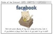 Les médias sociaux expliqués par des chats | Communication 2.0 et réseaux sociaux | Scoop.it