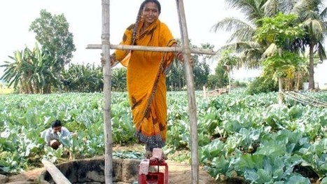 Supporting social entrepreneurship to address poverty in South Asia - Devex | social enterprise, microfinance, agroenterprise & the farmers | Scoop.it