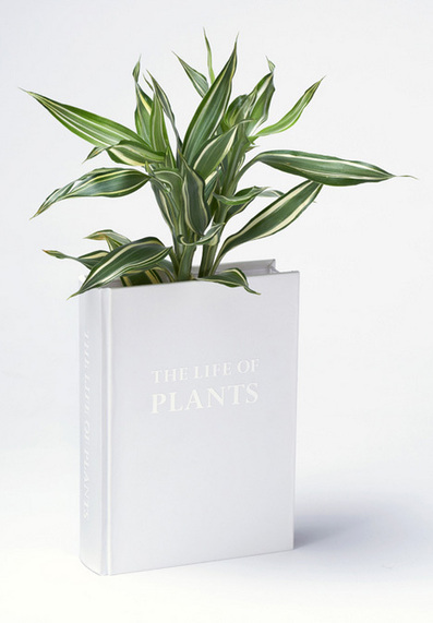 Book Vase: Surprise Sprouts Right Out of Reading Collection | Garden Designer | Scoop.it