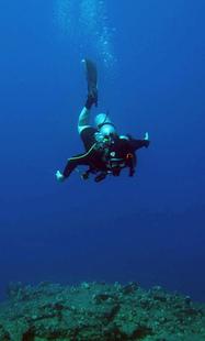 Best Dive Sites Across The World | Travel & tourism | Scoop.it