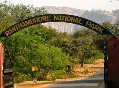 Ranthambore National Park Safari Tours: Explore the Safari tours in India   Safaris in India & Africa   Scoop.it