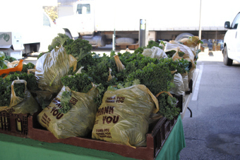 Baltimore Farmer's Market & Bazaar | Local Food Systems | Scoop.it