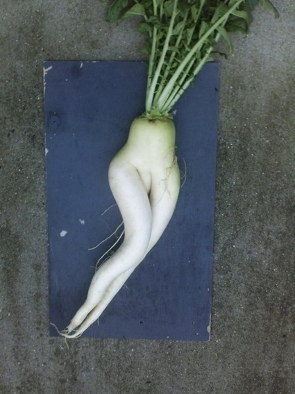 Erotic produce may seduce you | Vloasis sex corner | Scoop.it