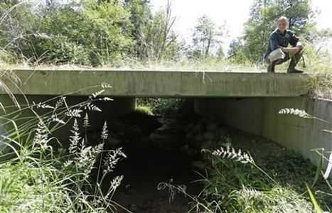 Washington must fix culverts to allow tribal fishing, feds say - OregonLive.com | Fish Habitat | Scoop.it