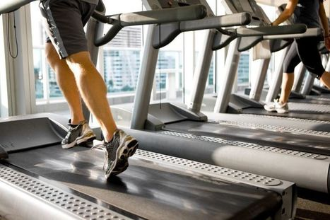 How many calories are you burning? - Fox News | Indoor Rowing | Scoop.it