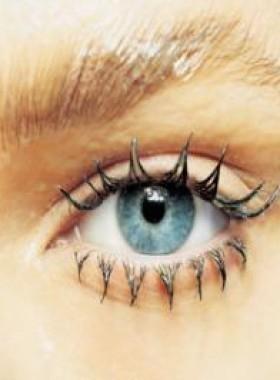 El aumento de trastornos visuales se relaciona con la cantidad de luz que ingresa al ojo | PRODUCTOS NATURALES | Scoop.it