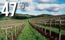 Agriculture : Pourquoi notre filière bio doit être soutenue | Chuchoteuse d'Alternatives | Scoop.it