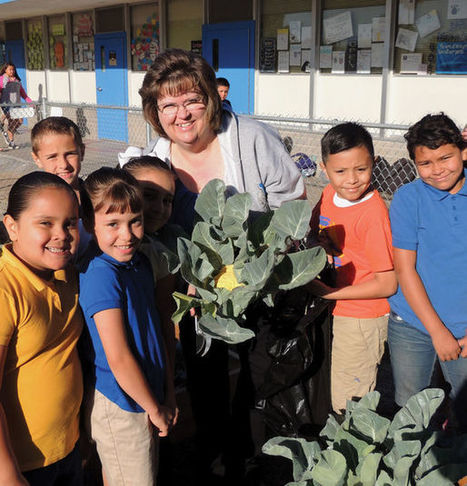 Desert Gardener: Age-old skill of gardening sees revival in schools | CALS in the News | Scoop.it