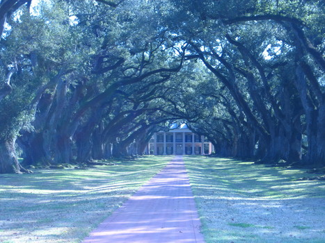 #historyread – Historic houses in America #rwpchat | Oak Alley Plantation: Things to see! | Scoop.it