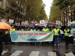 "Global Asbestos Awareness Network BLOG: ""The ANDEVA International Demonstration for Asbestos Victims, Paris"" by Yvonne Waterman | | Asbestos and Mesothelioma World News | Scoop.it"