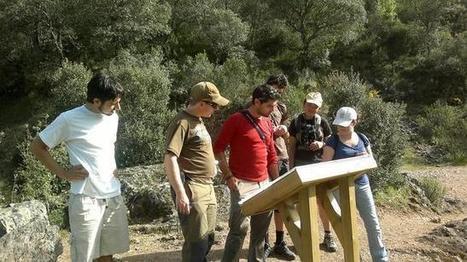 SEO/BirdLife acredita a cinco empresas de turismo ornitológico - ABC.es | Casa NIDO - HOUSE NEST | Scoop.it