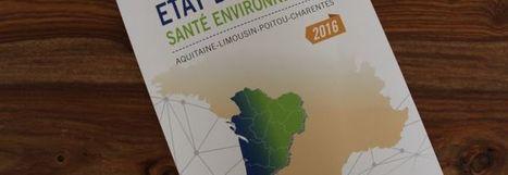 Portail Santé Environnement » Santé-environnementale : l'état des lieux 2016 volontairement cartographique | Qualité de l'air en Nouvelle-Aquitaine | Scoop.it