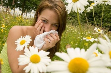 10 Ways to prevent hay fever symptoms | Diseases and Conditions | Scoop.it