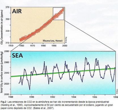 Océanos: su acidificación es una amenaza real y grave de nuestra existencia - Ecoportal.net | Planeta Tierra | Scoop.it