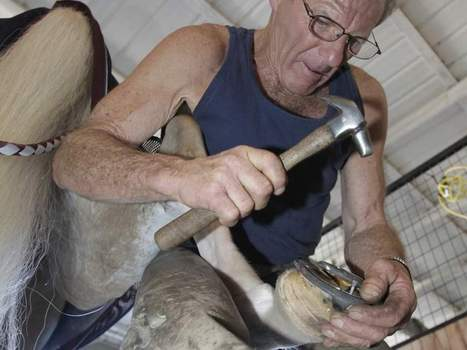 HITS farrier John Jacques applies experience, expertise | Hoofcare and Lameness | Scoop.it