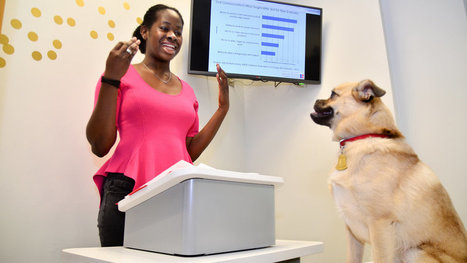 Public Speaking? Woof! | Integrated Practice | Scoop.it