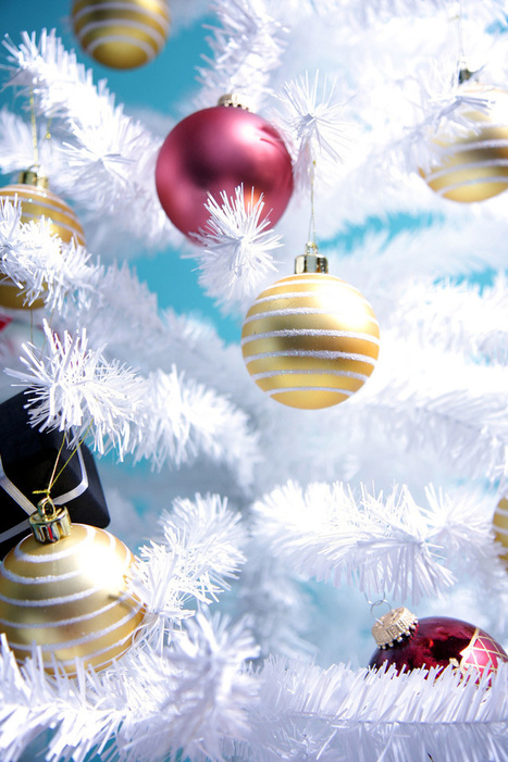 Christmas Events at Mt Juliet-Wilson County Library | Tennessee Libraries | Scoop.it