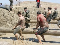 Obstacle Course Training: The Balance Beam | Westminster | Broomfield | Fitness | Scoop.it