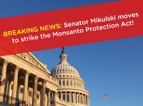"""Center for Food Safety 