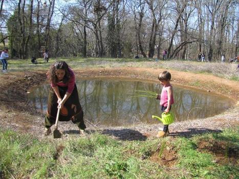La CHG inicia la recuperación del arroyo Bejarano en Córdoba | Blogs de naturaleza | Scoop.it