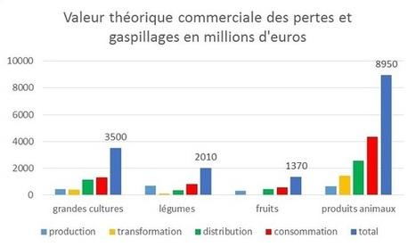 Gaspillage alimentaire : les chiffres chocs | Planete DDurable | Scoop.it