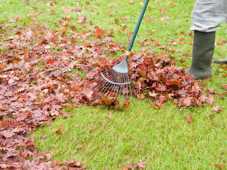Quick Fall Cleaning Tips | HSN Blogs | Cleaning and Maintenance Tips | Scoop.it