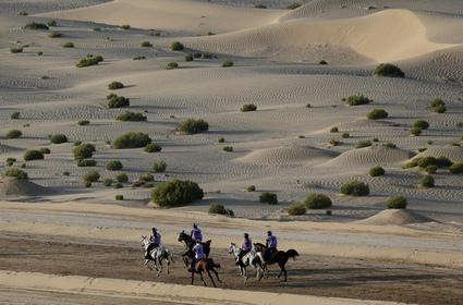 Endurance : aux Émirats Arabes Unis, la course de la honte | Cheval et sport | Scoop.it