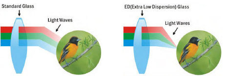Extra Low Dispersion Glass (ED Glass) - The Complete Guide | World of Optics | Scoop.it