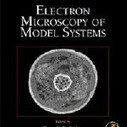 Electron Microscopy of Model Systems, Volume 96 (Methods in Cell Biology) book download<br/><br/>Thomas Mueller-Reichert<br/><br/><br/>Download here http://boemnab.info/1/books/Electron-Microscopy-of-Model-Systems--Vo... | Systems Biology | Scoop.it