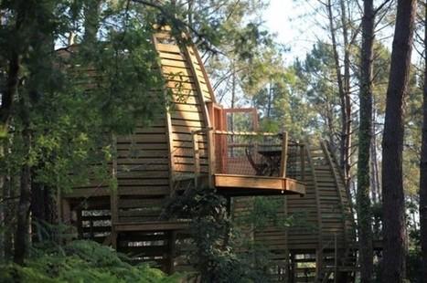 Aquitaine : Cabanes dans les arbres dans la forêt des Landes | TOURISME Responsable et Durable | Scoop.it