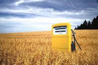Biocarburants : modifier les objectifs pour éviter une crise alimentaire | Manger ou conduire: les biocarburants sont-ils une solution durable? | Scoop.it