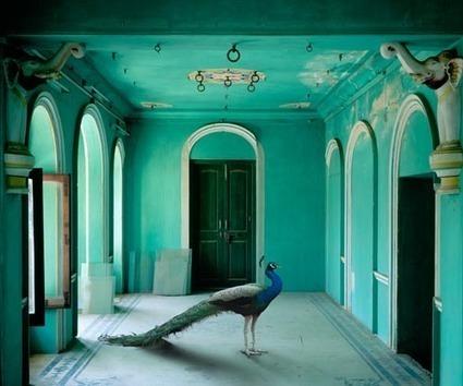 educate your sofa: Turquoise power   Designing Interiors   Scoop.it