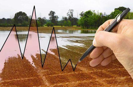 La régulation des marchés n'est pas un péché originel | Questions de développement ... | Scoop.it