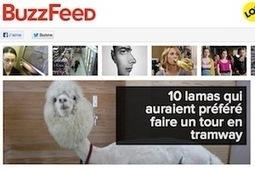 Buzzfeed, le réseau social de news, débarque en France | Les arts, la mode, la publicité et Internet | Scoop.it