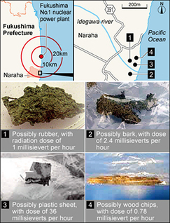 Mystery objects with high radiation found on Fukushima coast | Japan Tsunami | Scoop.it