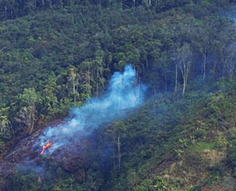 In Pre-1492 Amazon, Farmers Managed Without Fires : Discovery News | Food issues | Scoop.it