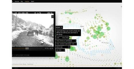 Narratives digitals en línia   Tools & code for web storytelling   Scoop.it