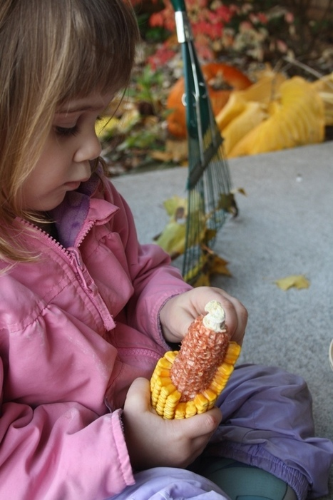 Playing with corn | Kindergarten | Scoop.it