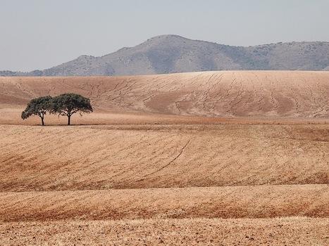 Espagne : à la découverte de l'Andalousie | Envie d'évasion et de voyage? | Scoop.it