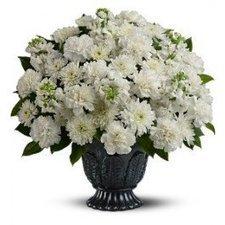Pure Serenity | Flower Shop Toronto | Scoop.it