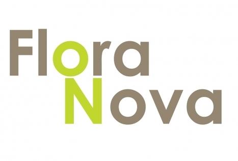Le groupe Flora Nova présent à Franchise Expo Paris | Actualité de la Franchise | Scoop.it