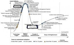 Gamification, Virtual Worlds and The Gartner Hype Cycle | Digital Delights - Avatars, Virtual Worlds, Gamification | Scoop.it