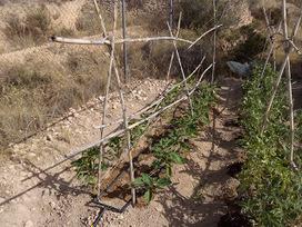 Mi Huerto ecológico: Probando una abonadora con venturi...en proceso | Master de Agroecología Desarrollo Rural y Agroturismo | Scoop.it