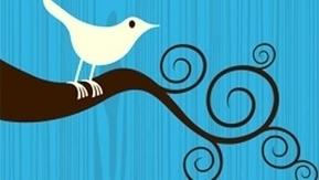 8 conseils pour améliorer son taux de clic sur Twitter | Référencement, SEO, SMO et votre company | Scoop.it