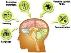Fitbrains.com-Brain Games, Brain Training & Brain Fitness | Cognitive Enhancement Technologies | Scoop.it