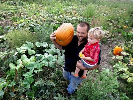 Five pumpkin patches for family fun - DesMoinesRegister.com | The power of Play | Scoop.it