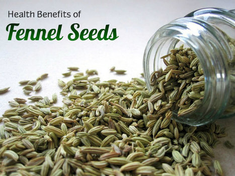 Health Benefits of Fennel Seeds   At Home Health and Beauty Tips   Scoop.it
